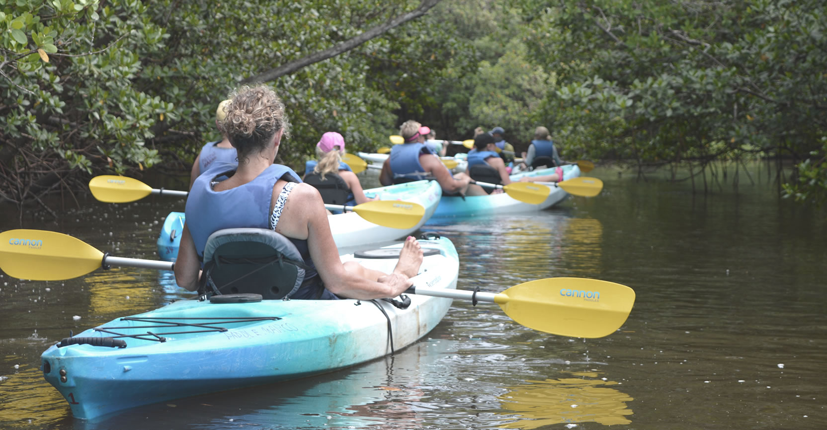 About our kayak tours